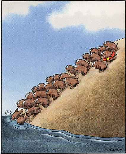 crowded trade, lemmings, small investors